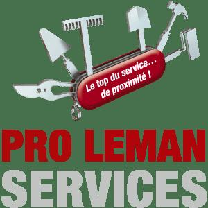 Logo Pro Leman Services Carre