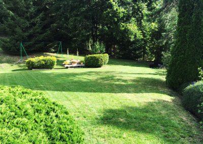 Pelouse Tonte de pelouse et taille